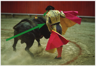 Copyright Michael Freeman. From the Art of Photography course material. In this image of a bullfight, the main implied line, I feel, is the movement of the bull across the front of the matador. There is also the eye-line of the matador as he follows the bull's movement.