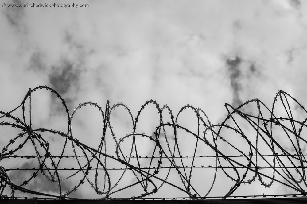 This curled razor wire at the top of a fence has a rhythmic quality (I think) as you try and follow its swirling from left to right.