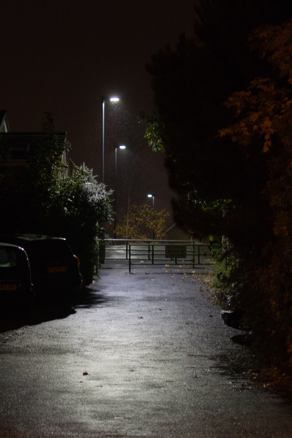 ISO 800 * 1/30s * 35mm * f/1.8 Streetlights in the rain. This image is quite significantly cropped.