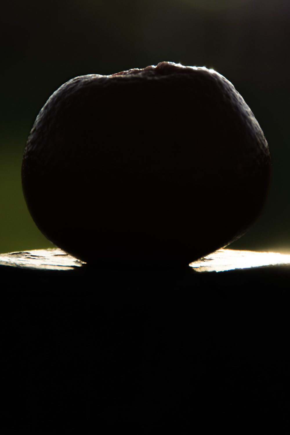 This second image, to demonstrate shape, was taken outdoors against a low morning sun. The sun was slightly higher in the sky than I would have liked so the top of the fruit is lit a little more than the lower part. This can also be seen by how the pole that is was positioned on has a lot of reflection from its top.
