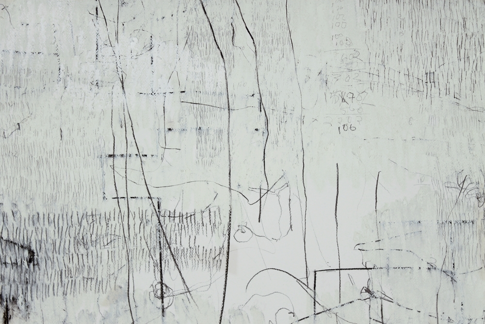 "7,930 Steps to Tania (McDowell Road) (detail),  Graphite, charcoal, oil on paper, 14.2"" x 17.5"", 2010"