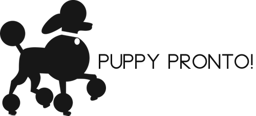 PuppyPronto! | Premier Dog Walking and Pet Services | Los Angeles, CA