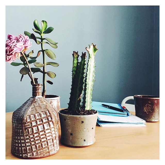 Early-morning brainstorms made easier by pretty notebooks and coffee in invigoratingly be-skulled cups. 🌱 (Also, plants; plants are always helpful.)