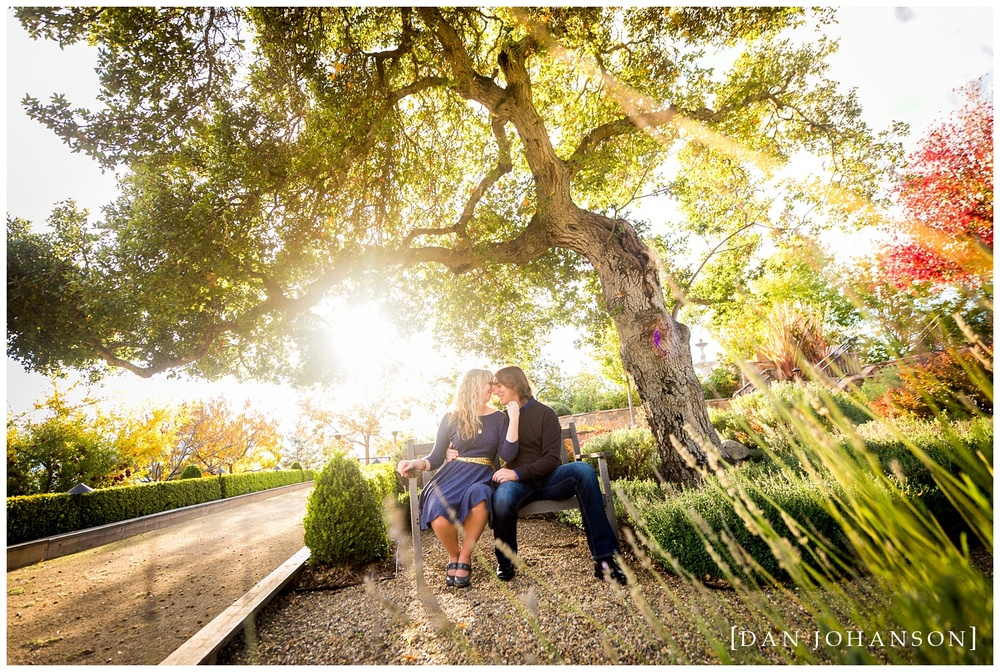napa-estate-engagement.jpg