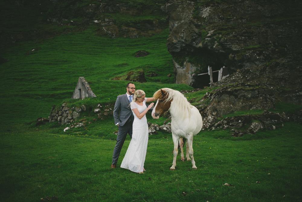 wedding iceland horse