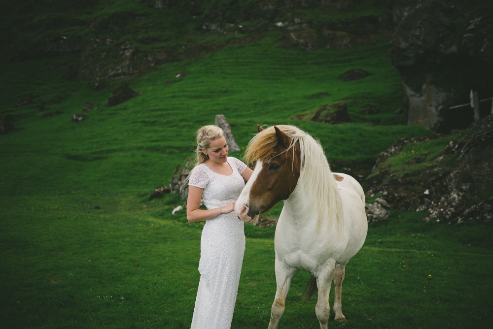 bride with icelandic horse