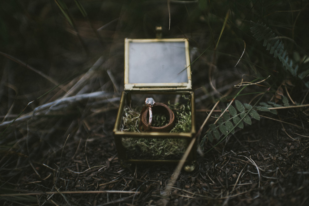 wedding engagement ring glass box forest kananaskis