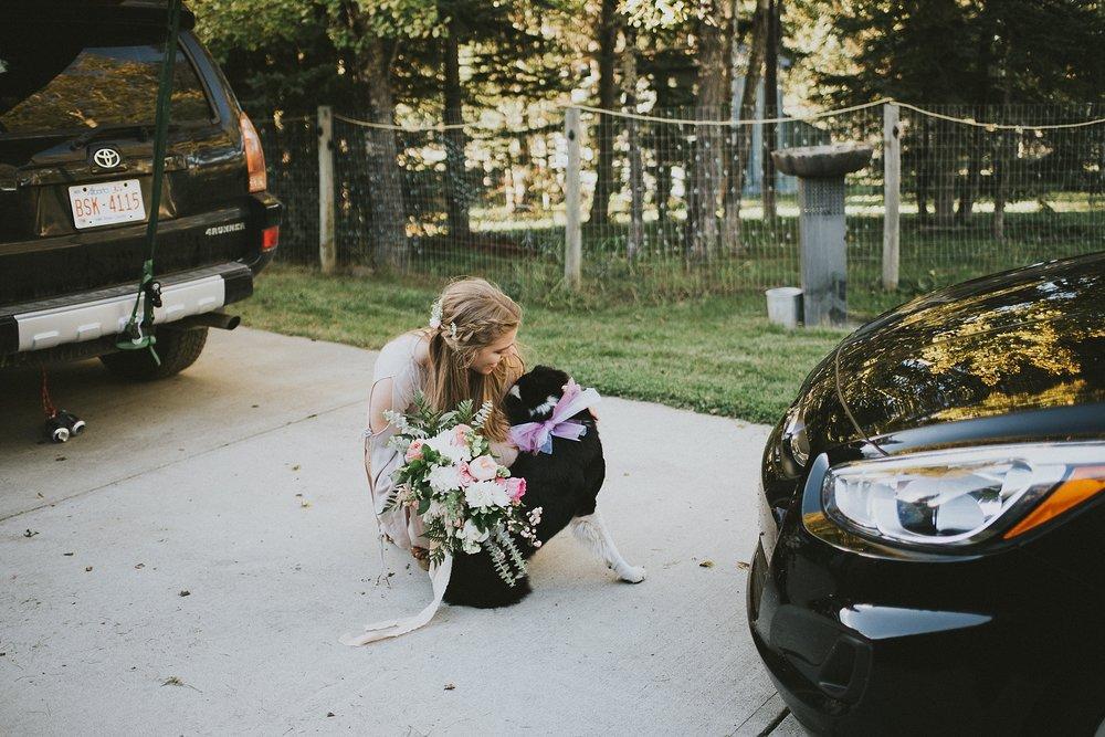 bride elopement candid dog kananaskis