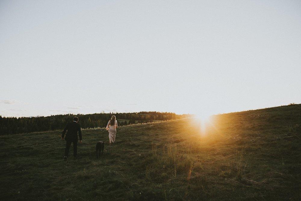 bride groom dog walk field sunset kananaskis