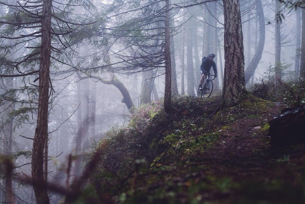 Outer Ridge Trail // Hornby Island // Nicholas Kupiak