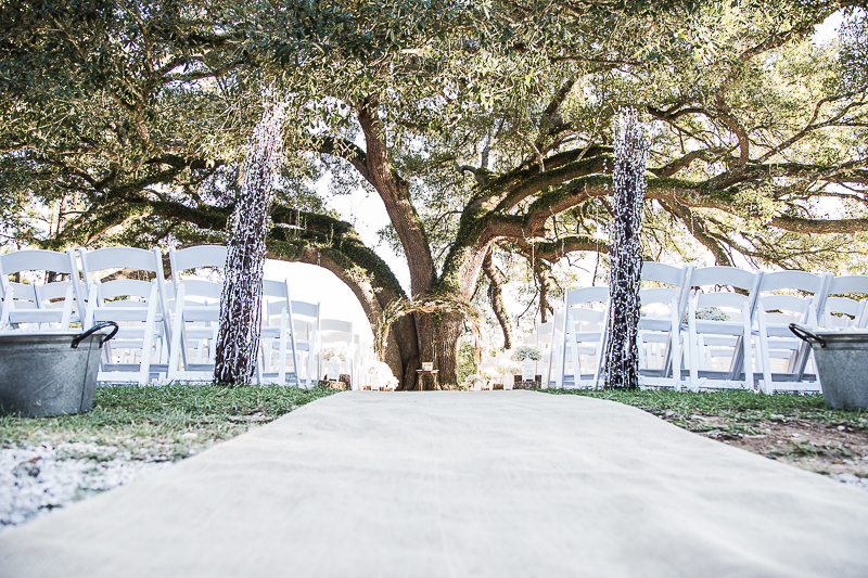 Beautiful Large Oak Tree where the ceremony was held