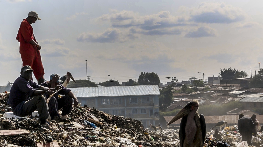 """Tuko Pamoja"" - Maribou storks and waste workers often work side by side in Dandora. Plans to relocate the dumpsite to Ruai were dashed in January 2016 when the Kenya Aviation Authority warned that scavenging birds would be too much of a flight risk for incoming and outgoing flights from Jomo Kenyatta International Airport."