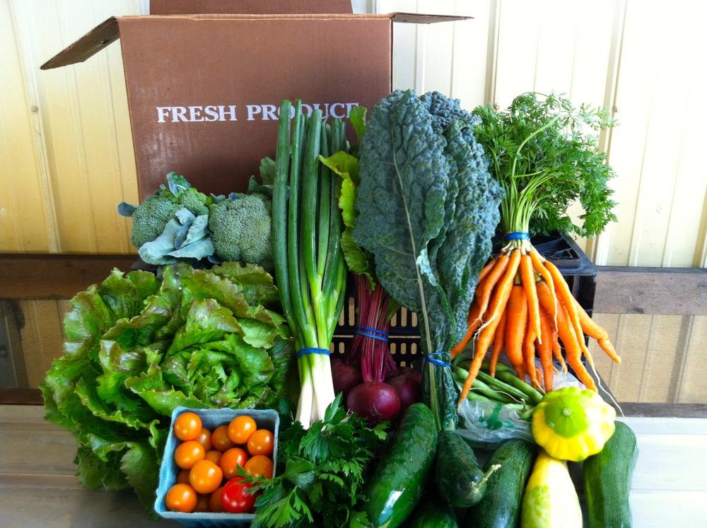 Loon Organics CSA Boxes