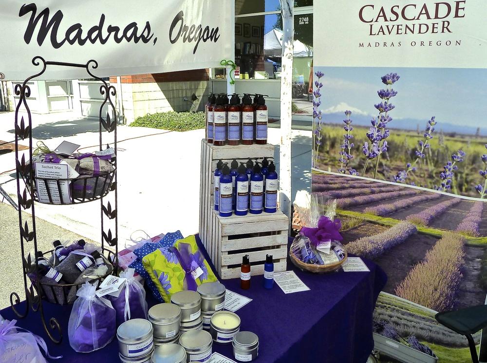 Cascade Lavender -Madras, Oregon