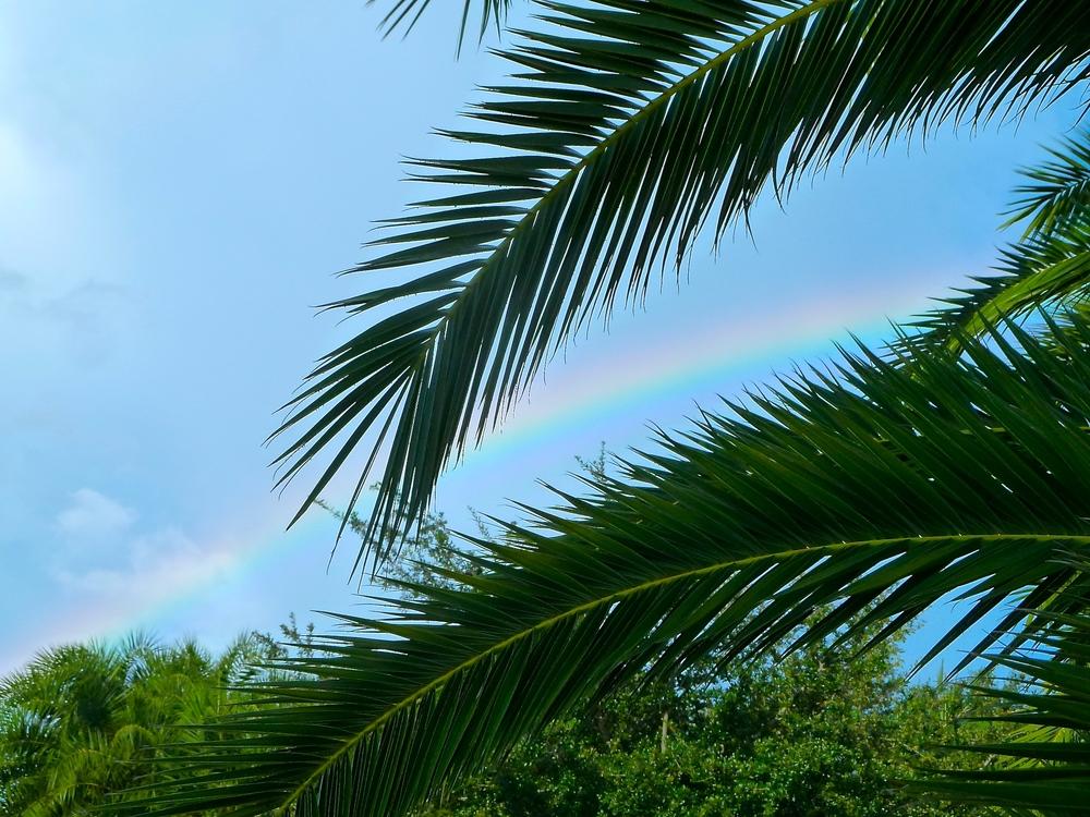TST_rainbow_blessing_photo.jpeg
