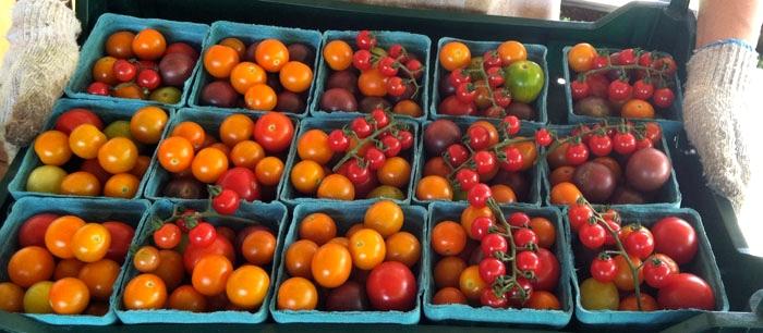 rainbow-cherries_1.jpg