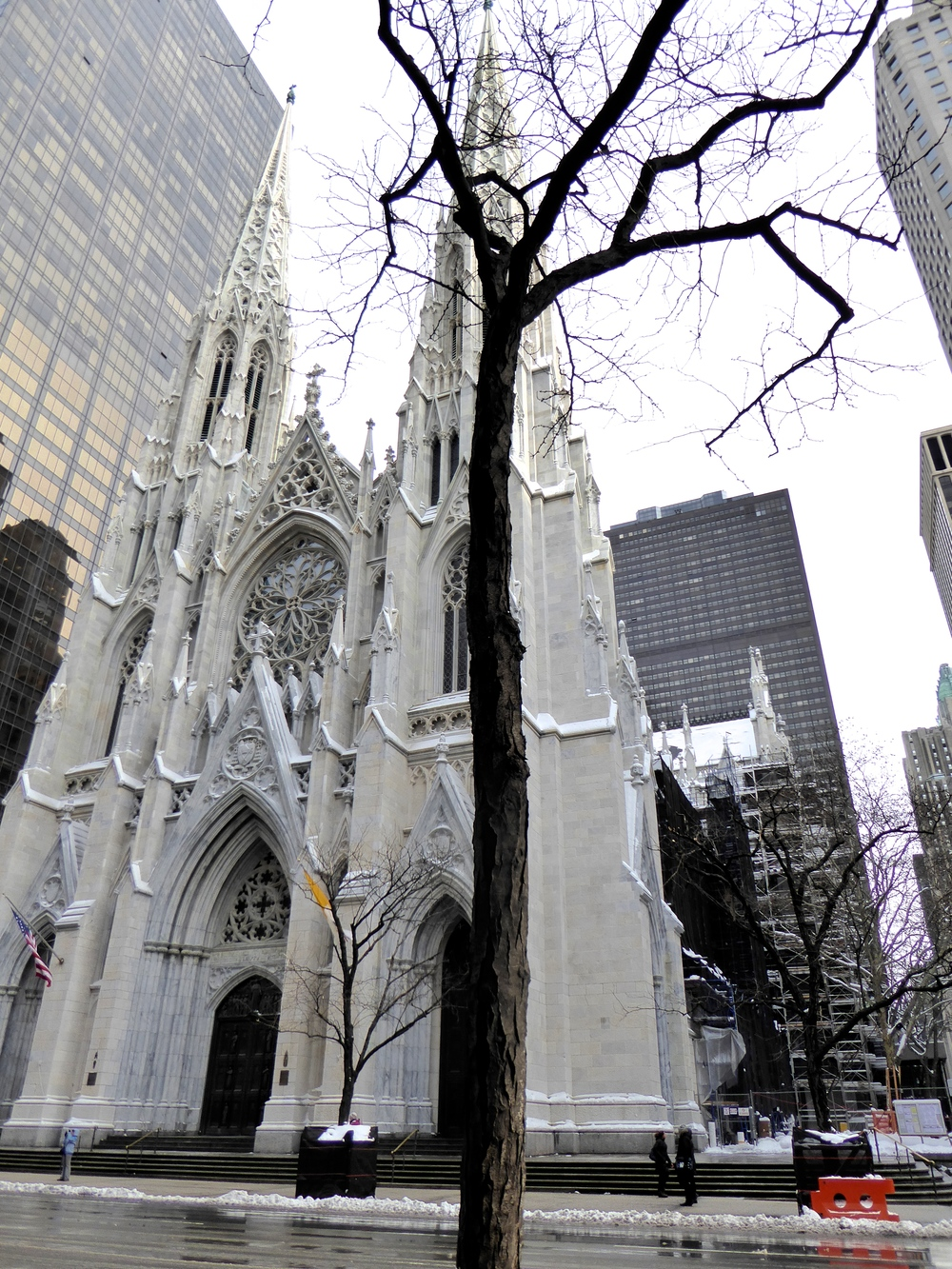 TST_St.Patrick'sCathedral_NYC_Snowstorm_January2015_photo.jpeg