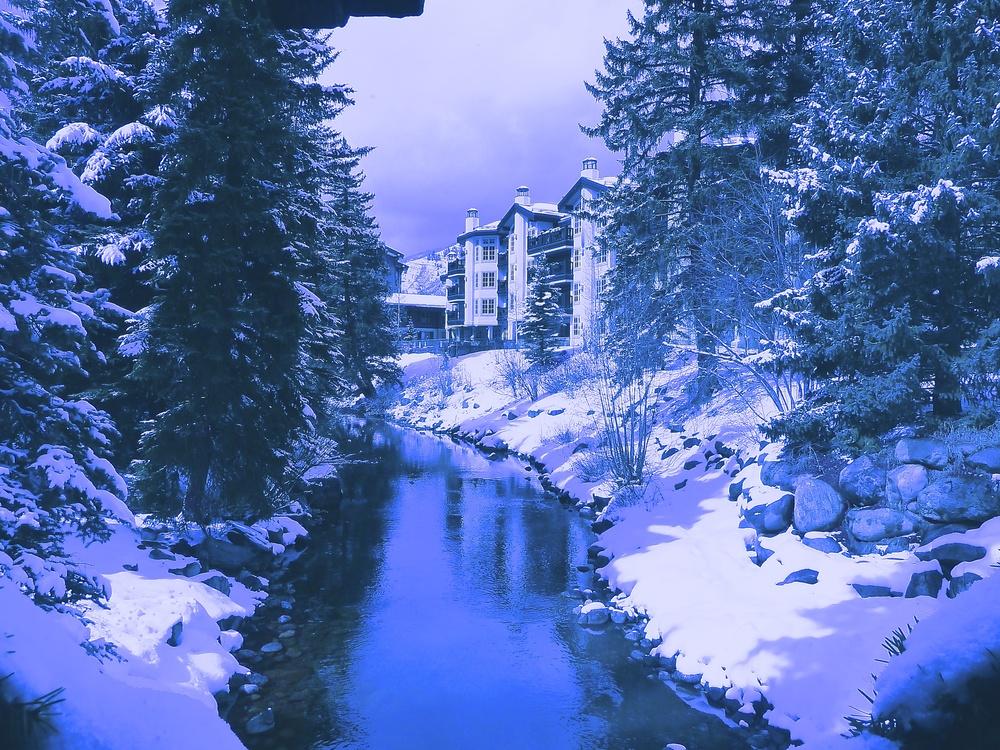 TST_Vail_Winter_Creek_photo.jpeg
