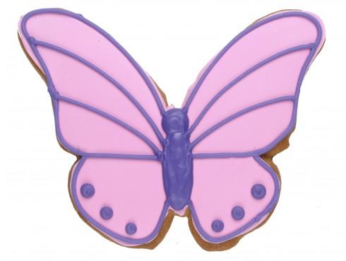 store_butterfly.jpg