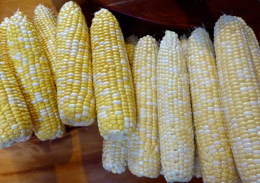 Wisconsin Sweet Corn