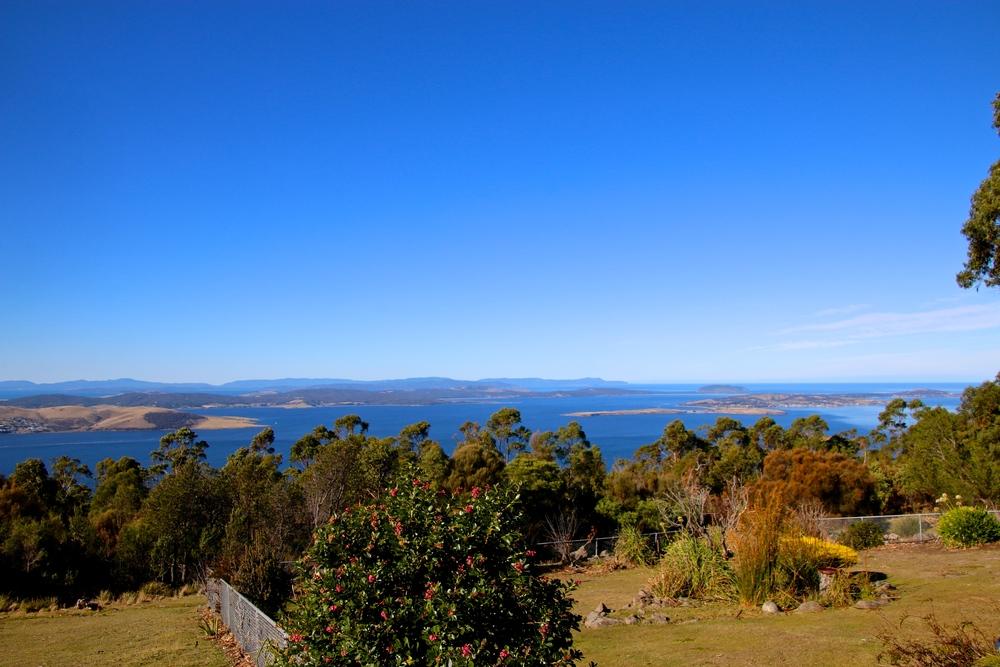 spiritedtable_tasmaniandevil_hobart_australia_travels_photo - 06.JPG