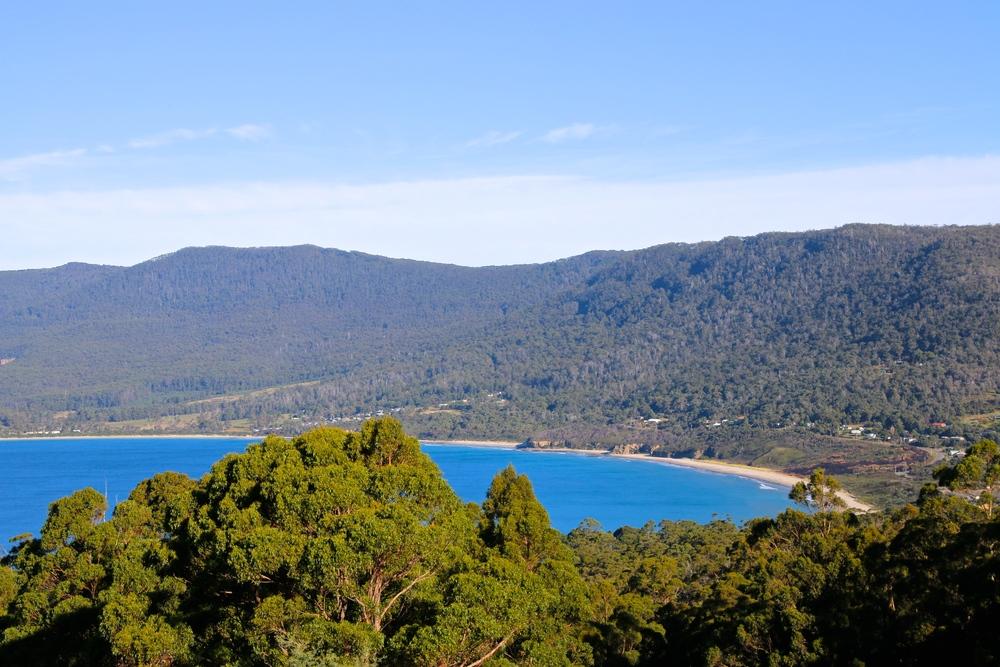 spiritedtable_tasmaniandevil_hobart_australia_travels_photo - 08.JPG
