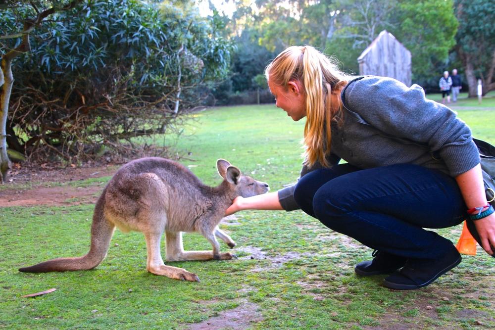 spiritedtable_tasmaniandevil_hobart_australia_travels_photo - 23.JPG