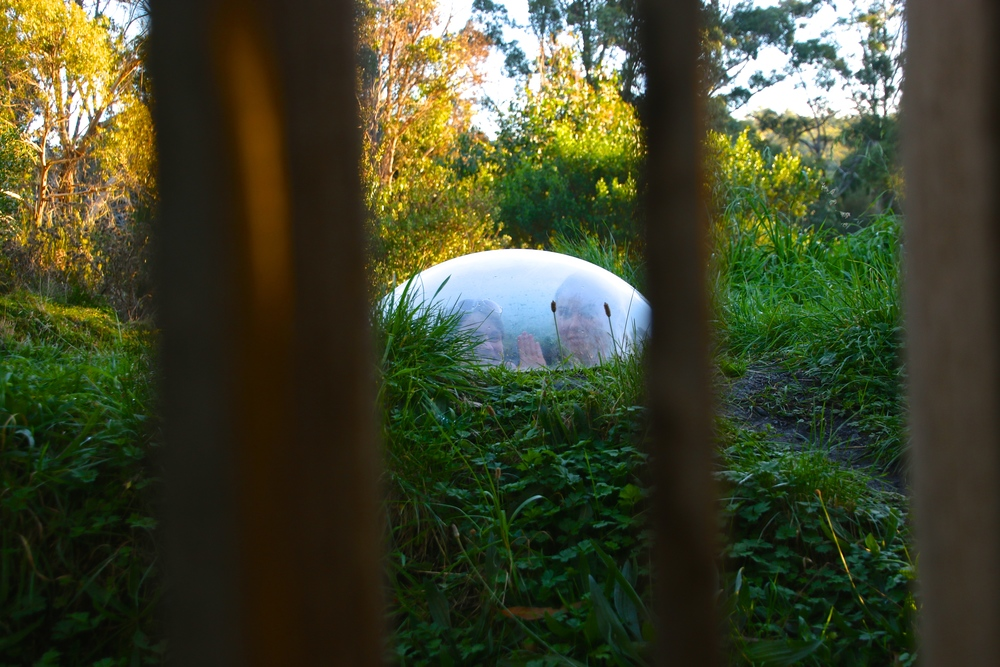 spiritedtable_tasmaniandevil_hobart_australia_travels_photo - 37.JPG