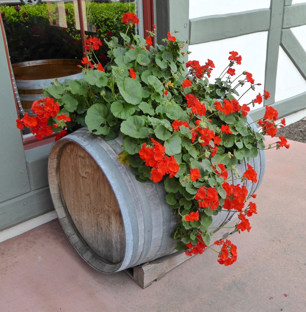 santa ynez valley_solvang_flowers_spiritedtable_photo.3.jpg
