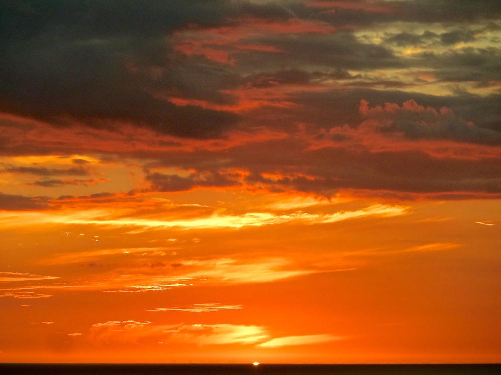 sunset_cindi_spiritedtable_photo1.jpg