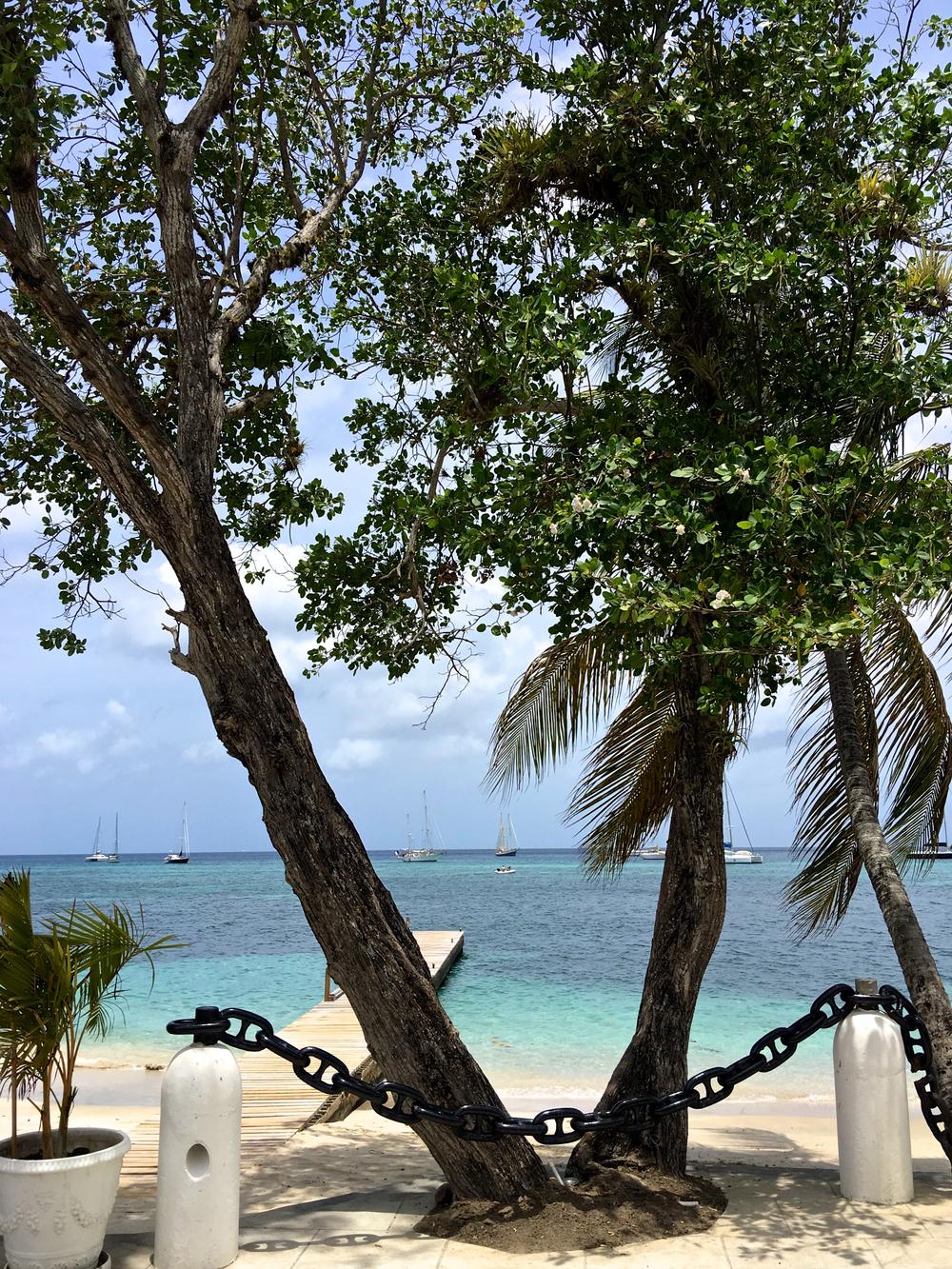 teri_bequia_pt4_snorkeling_lunch_spiritedtable_photo08.jpg