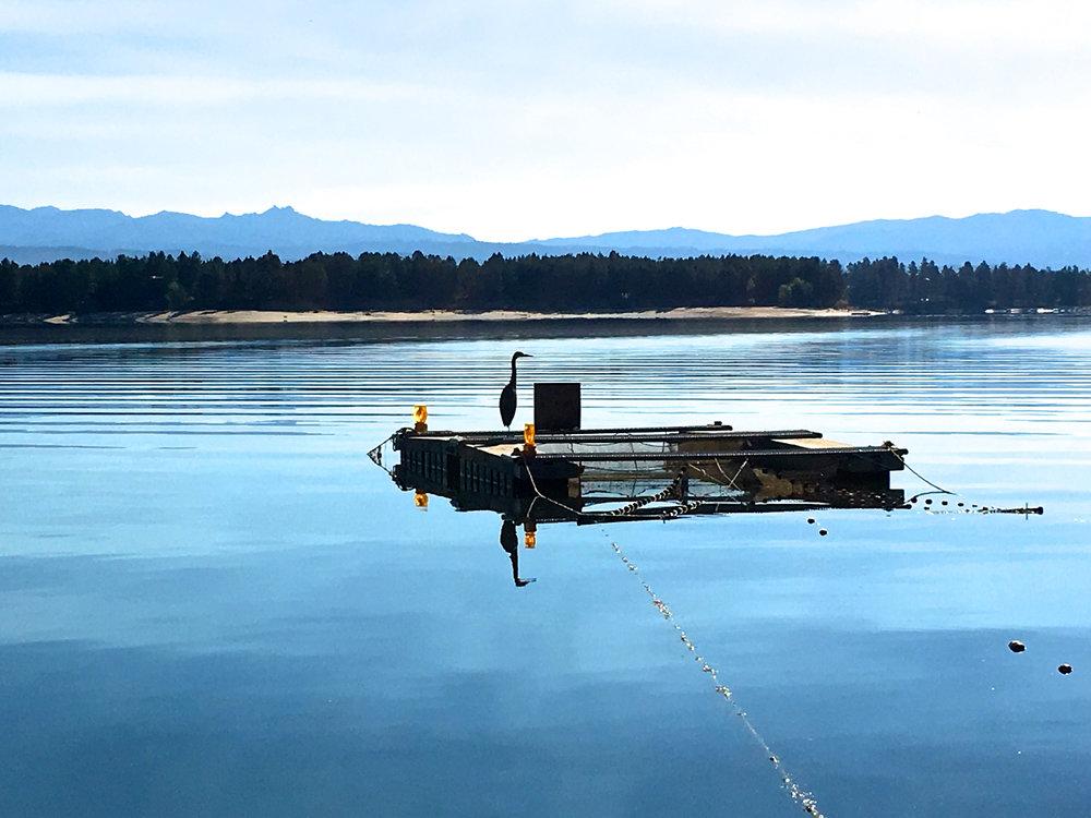 Cascade Lake, Idaho