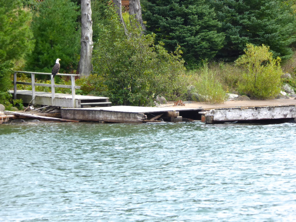 cindi_madelineisland_LakeSuperior_eagleondock_spiritedtable_photo.1.jpg