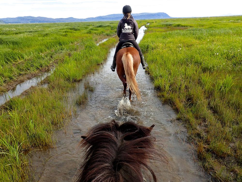 teri_horsebackriding_Iceland_spiritedtable_photo1.jpg
