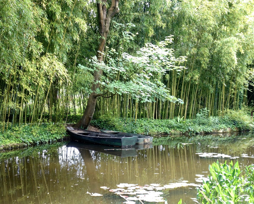 Monet's Pond with Boats and Bamboo   (photo courtesy of Lisa Michaux)