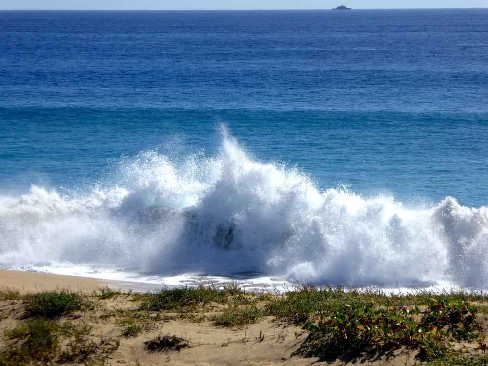 cindi_Cabo_beach_spiritedtable_photo1.jpg