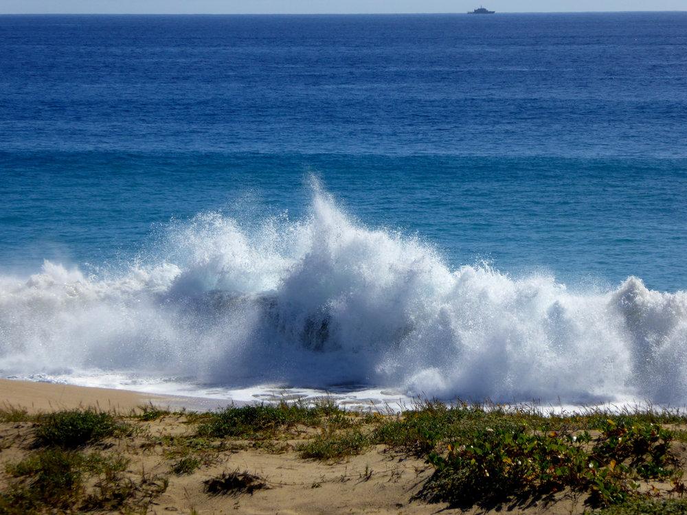 cindi_cabosanlucas_Lagoon_golf_beach_spiritedtable_photo13.jpg