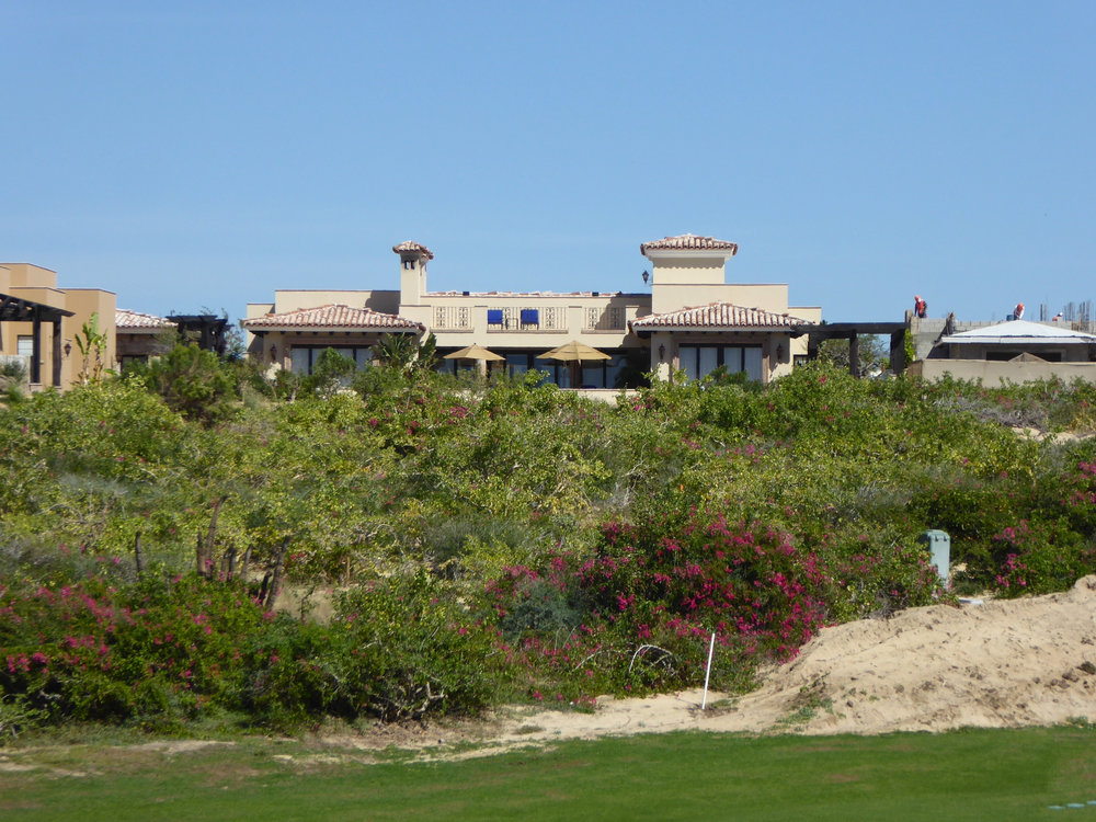 cindi_cabosanlucas_Lagoon_golf_beach_spiritedtable_photo27.jpg