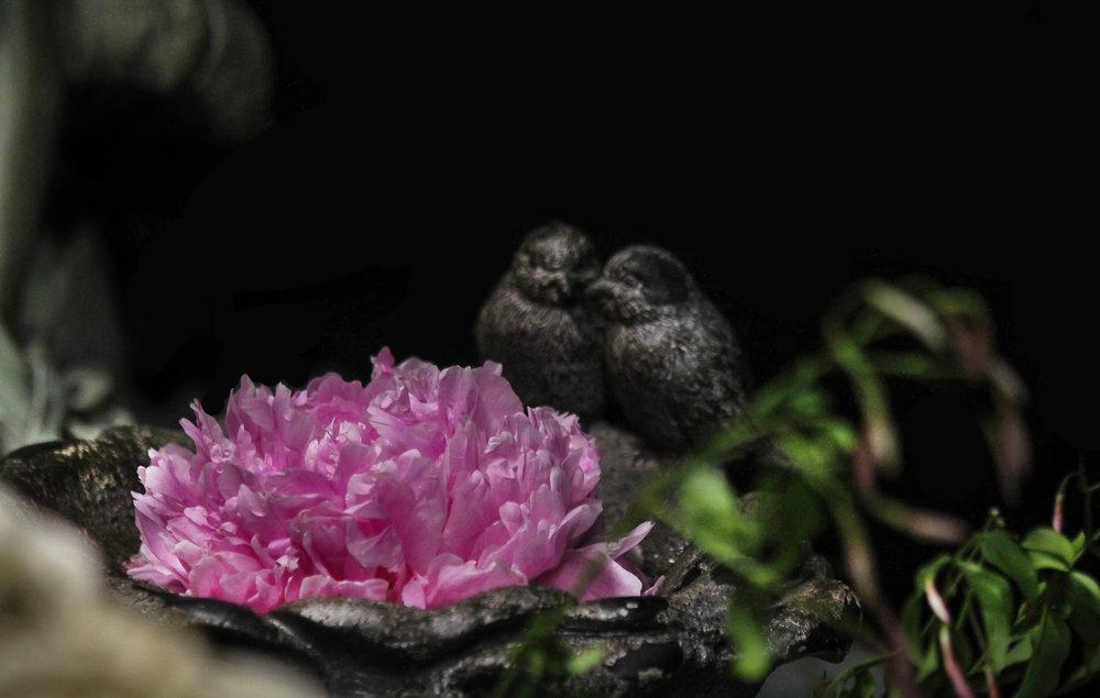 ardith_midsummer_night_dream_flowers_spiritedtable_photo02.jpg
