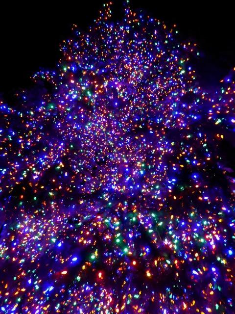 cindi_vail_lights_tree_spiritedtable_photo1.jpg