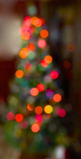 cindi_tree_spiritedtable_photo1.jpg