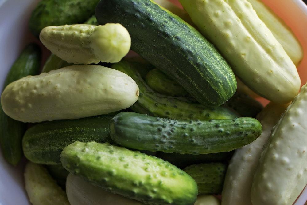 kristine_pickling_cucumbers_recipe_spiritedtable_photo3.jpg