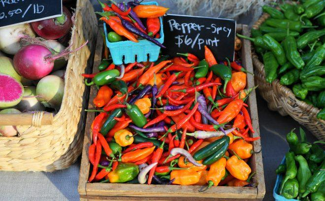 hot-peppers-urban-roots-725x408.jpg