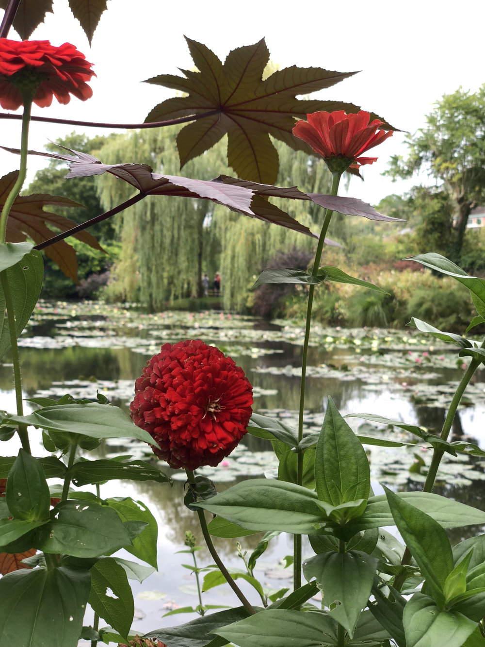 teri_Paris_laura'sbd_monet_giverny_l'orangerie_spiritedtable_photo37.jpg