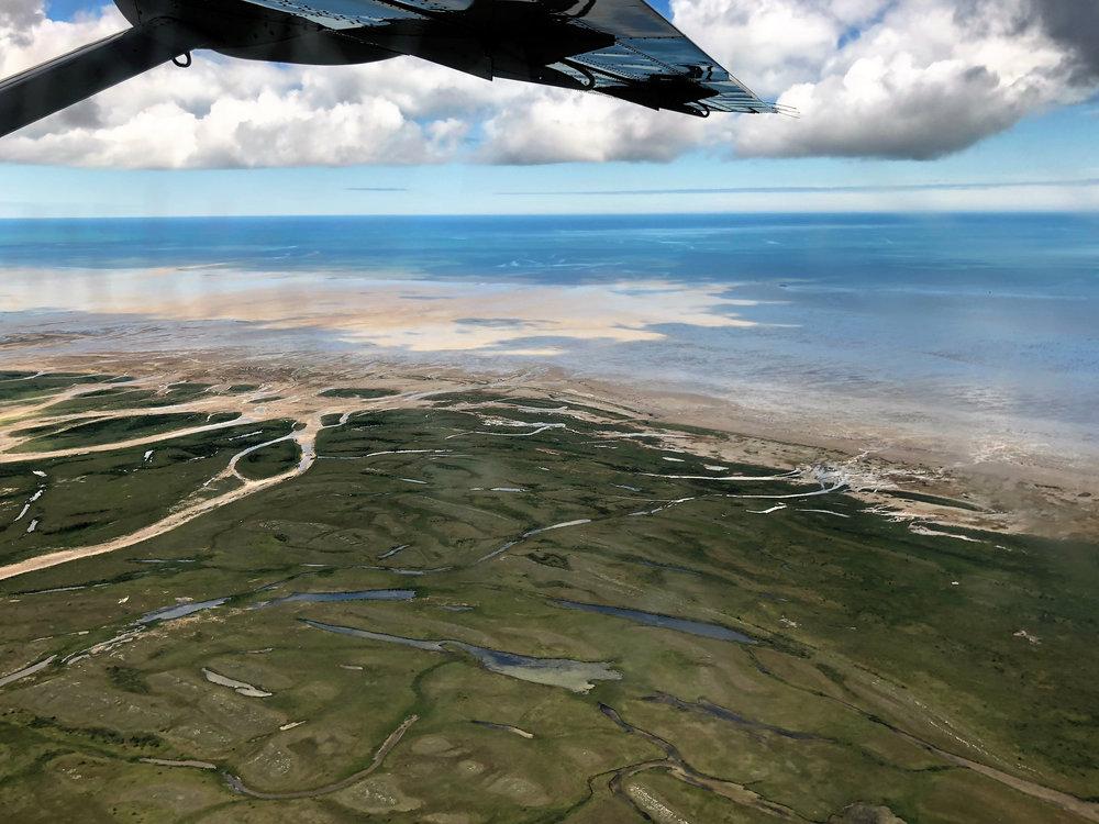 teri_flight_arctic_canada_spiritedtable2.jpg