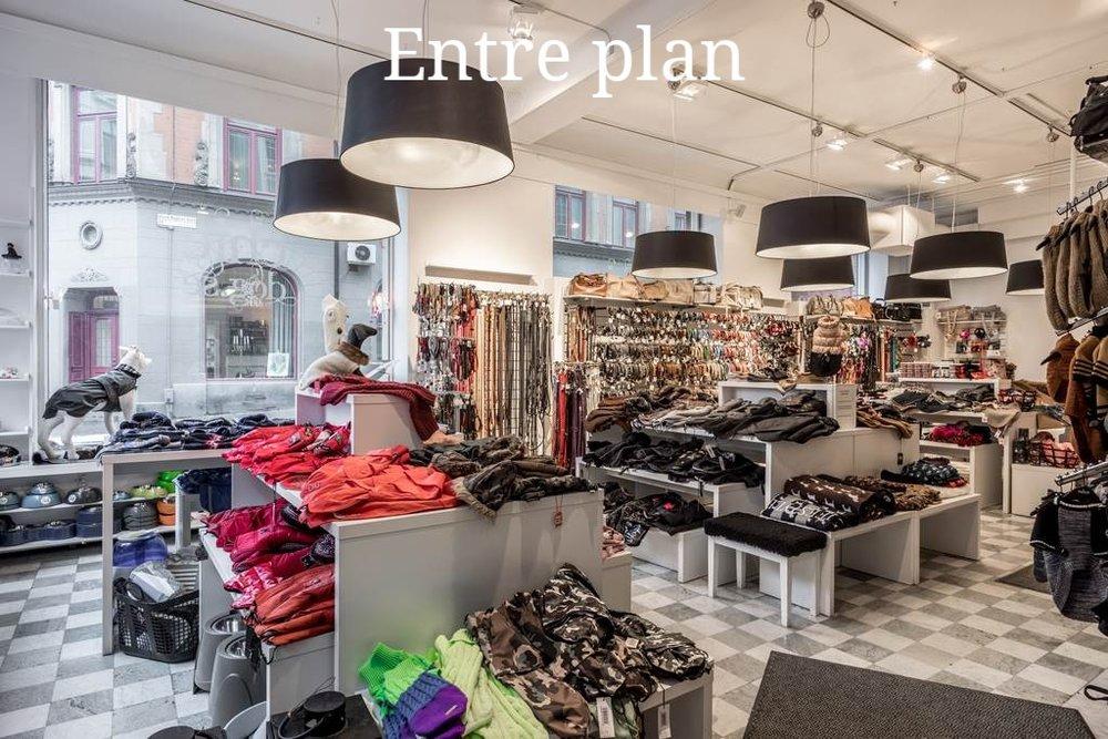 Entre plan