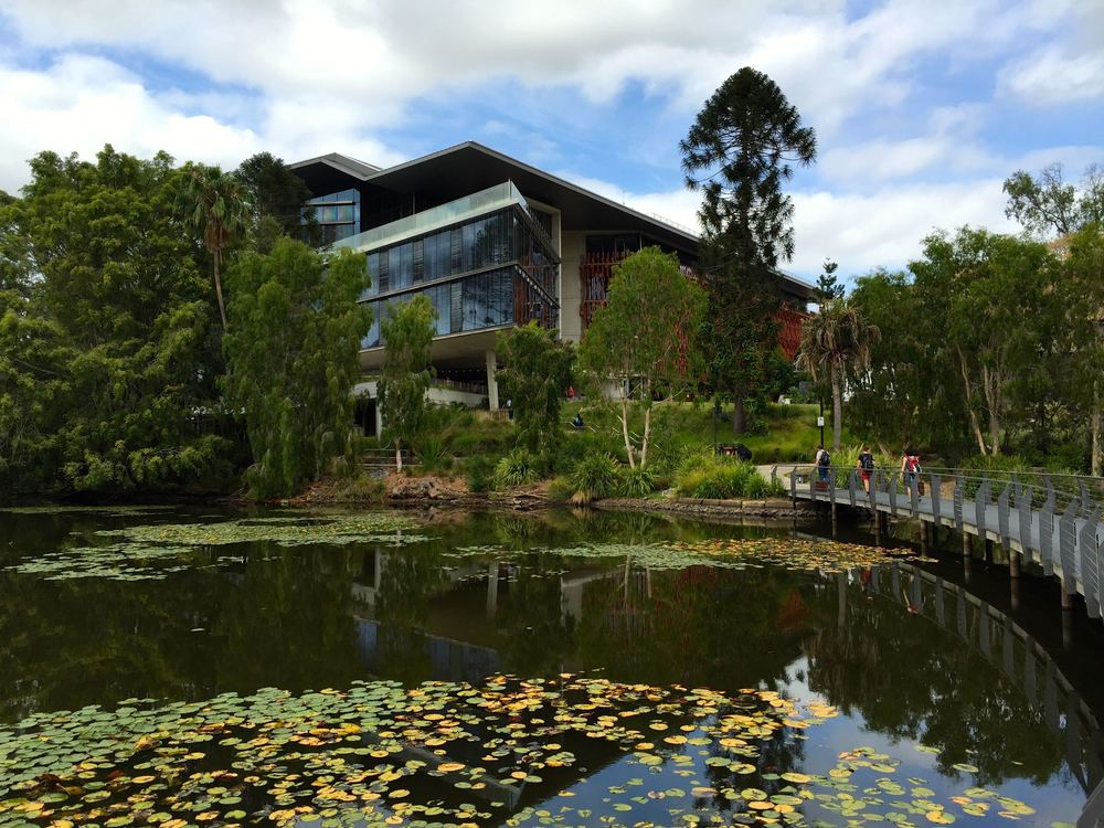 On the campus of the University of Queensland