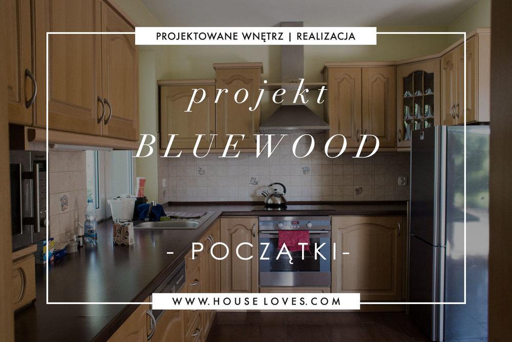 projekt-bluewood-poczatki1.jpg