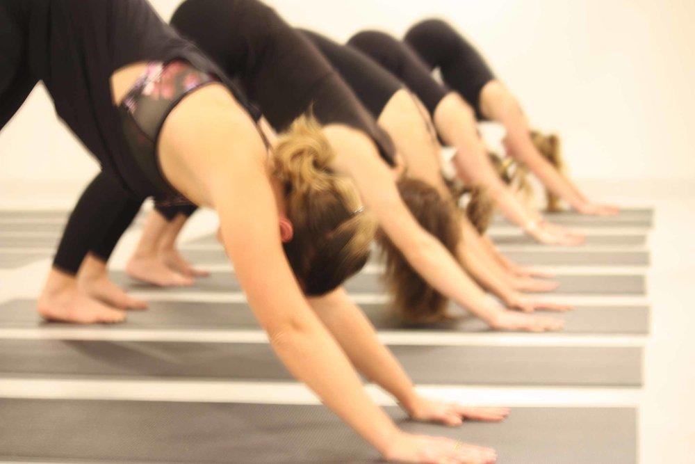 Yoga-Corner-Melbourne-Hot-Yoga-CBD-Studio-Teachers-Downward-Dog-.jpg