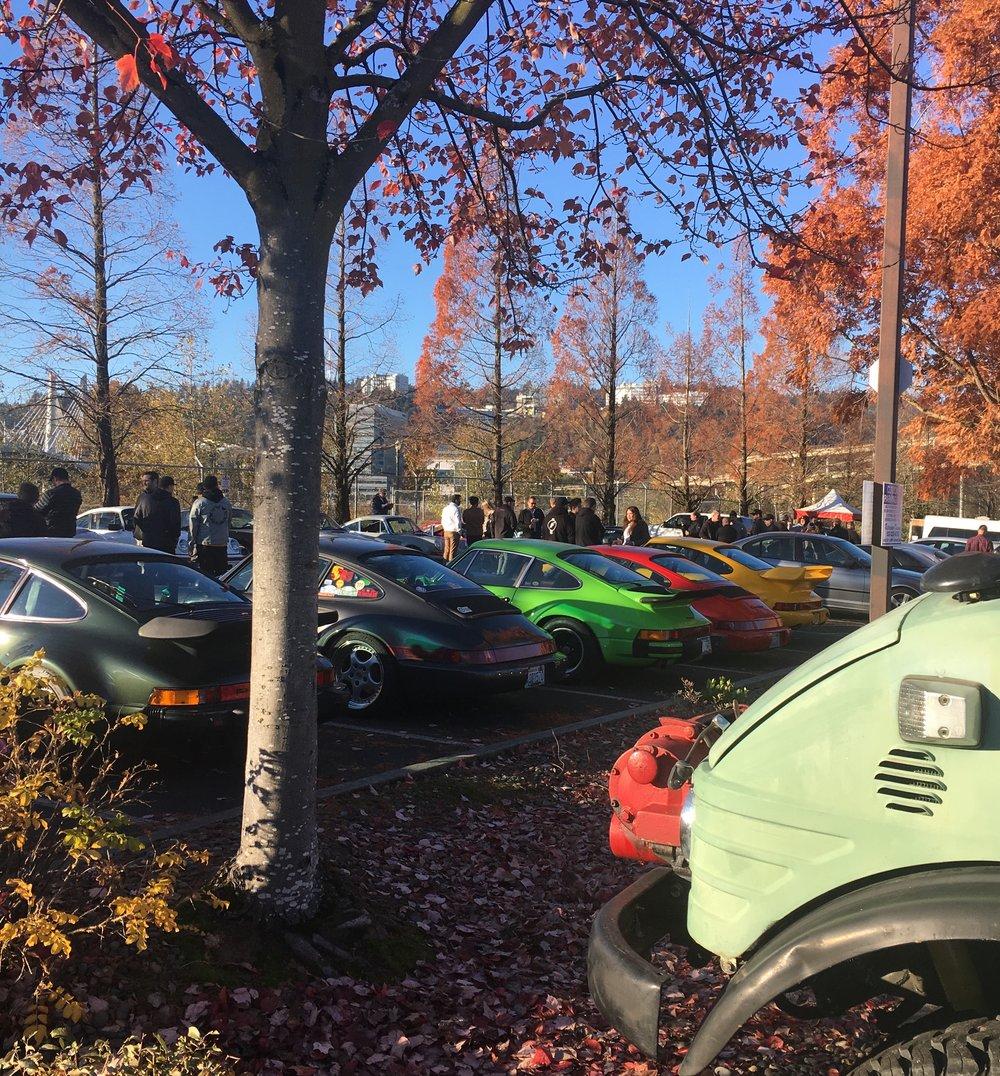 A gathering of Porsches